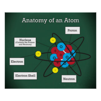 Anatomy of an Atom *UPDATED* Poster