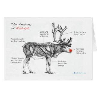 Anatomy of Christmas Card