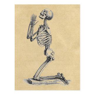 Anatomy of the Bones Sepia Postcard