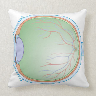 Anatomy of the Human Eye Throw Pillow
