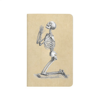 Anatomy Skeleton Illustration Journal