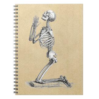 Anatomy Skeleton Illustration Spiral Note Books
