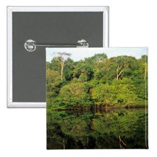 Anavilhanas, Amazonas, Brazil. Rainforest river 15 Cm Square Badge