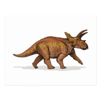 Anchiceratops Dinosaur Postcard