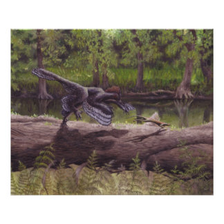 Anchiornis Print