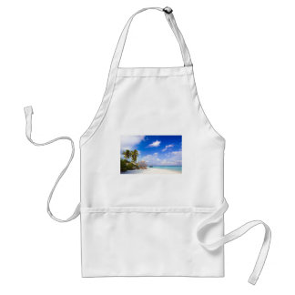 Anchored Offshore Beach Picture Standard Apron