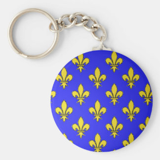 Ancient Armoiries,  France Basic Round Button Key Ring