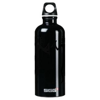 Ancient Astrounauts Water Bottle
