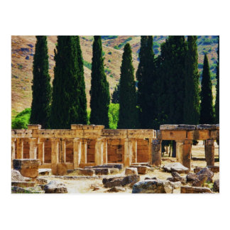 Ancient columns  Hierapolis, Turkey Postcard