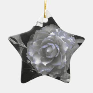 Ancient cultivar of Camellia japonica flower Ceramic Ornament