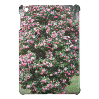 Ancient cultivar of Camellia japonica flower iPad Mini Cover