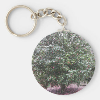 Ancient cultivar of Camellia japonica flower Key Ring