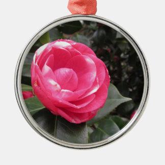 Ancient cultivar of Camellia japonica flower Metal Ornament