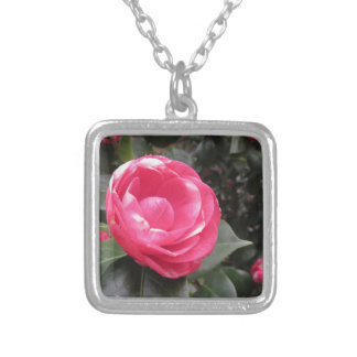 Ancient cultivar of Camellia japonica flower Silver Plated Necklace