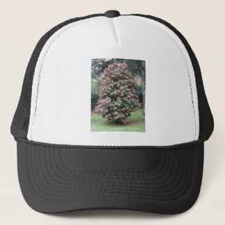 Ancient cultivar of Camellia japonica flower Trucker Hat