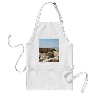 Ancient edifice, Masada, Israel Apron