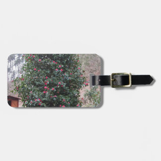 Ancient japanese cultivar of Camellia japonica Luggage Tag