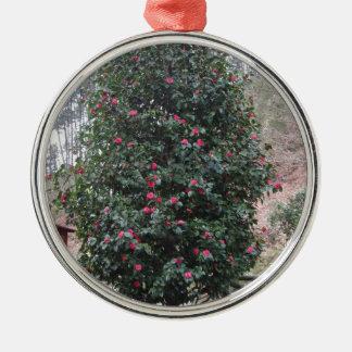 Ancient japanese cultivar of Camellia japonica Metal Ornament