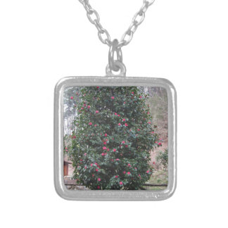 Ancient japanese cultivar of Camellia japonica Silver Plated Necklace
