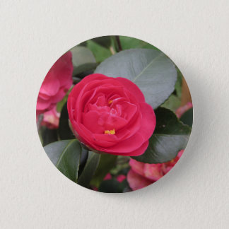 Ancient japanese cultivar of red Camellia japonica 6 Cm Round Badge