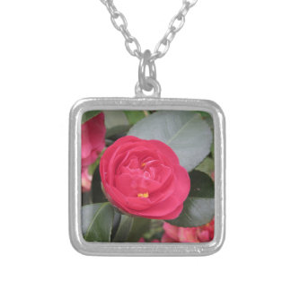 Ancient japanese cultivar of red Camellia japonica Silver Plated Necklace