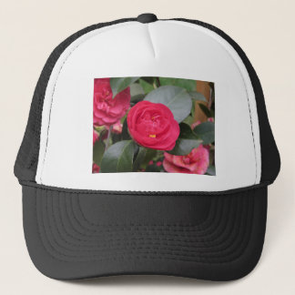 Ancient japanese cultivar of red Camellia japonica Trucker Hat