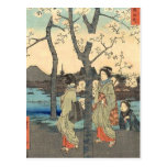 Ancient Japanese Women under Cherry Blossoms Postcard