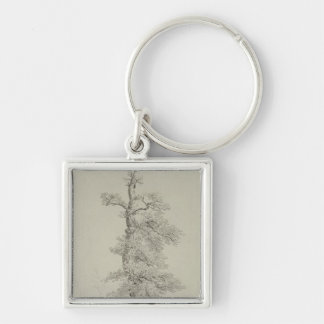 Ancient Oak Tree with a Stork's Nest Key Chain
