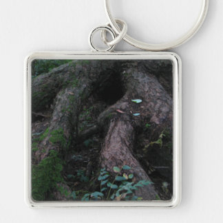 Ancient Roots Silver-Colored Square Key Ring