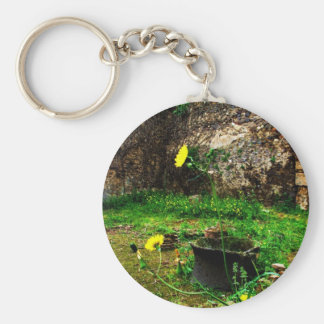 Ancient ruins of Pompeii Basic Round Button Key Ring