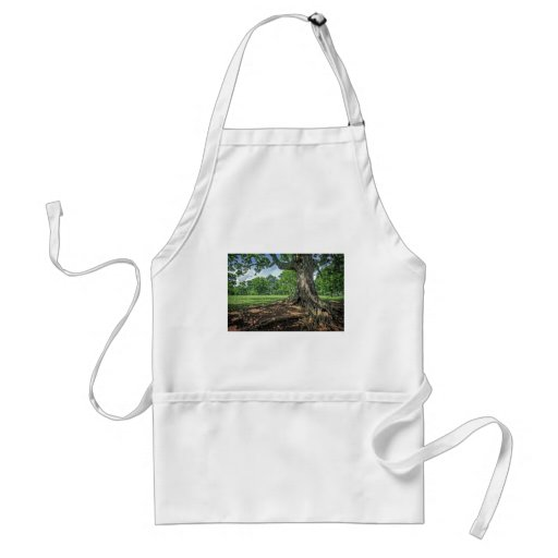 Ancient Tree and Roots Apron