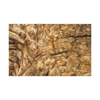 Ancient Wood Canvas Print