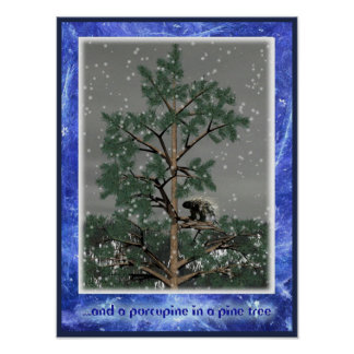 And A Porcupine In A Pine Tree Poster