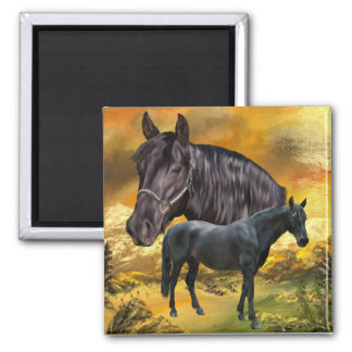 Andalusian Horse Print Square Magnet