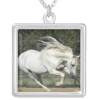 Andalusian Stallion running, PR Custom Necklace