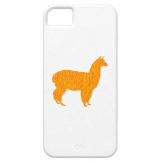 Andean Sun iPhone 5 Case