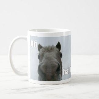 Andre says Hai Coffee Mugs