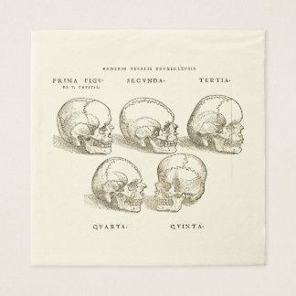 Andreas Vesalius Paper Napkins (x50) Disposable Serviette