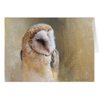 Andrew Denman Barn Owl Blank Card