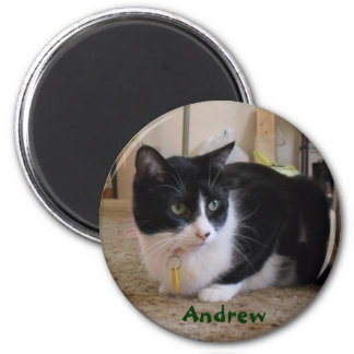 Andrew The Cat Magnet