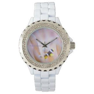Anemone fish watch