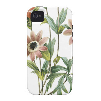 Anemone Stellata Vibe iPhone 4 Cover