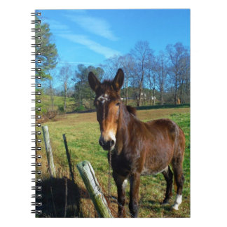 Angel BLOWING HORN WEATHER VANE Spiral Note Book