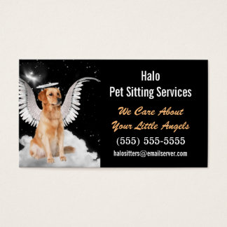 Angel Cat and Dog Pet Sitting Services