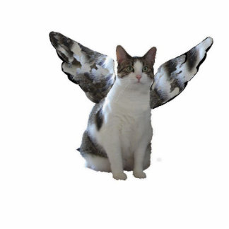 Angel Cat Photo Sculpture Key Ring