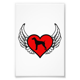 Angel German short-Haired Pointer winged Heart Photo