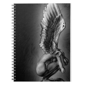 Angel, hold on. spiral notebooks