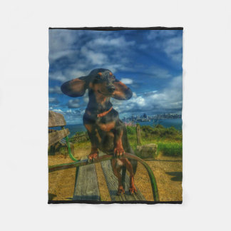 Angel Island Fleece Blanket