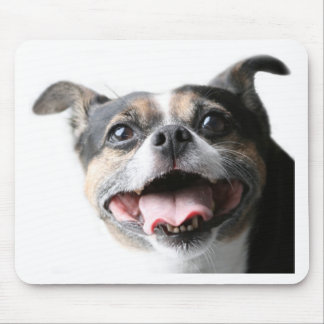 Angel of a Mutt Doggy - Mixed Breed - Canine Mouse Pad