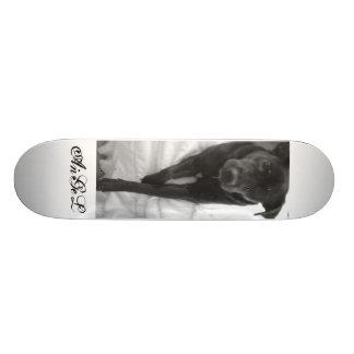 AnGeL Skate Board Deck